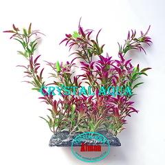 Растение Атман PP-046F, 20см