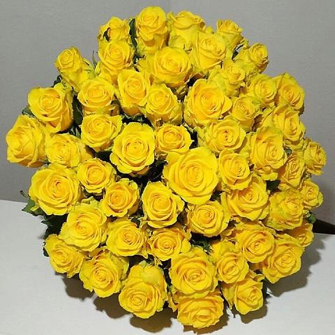 Букет из 51-ой желтой розы