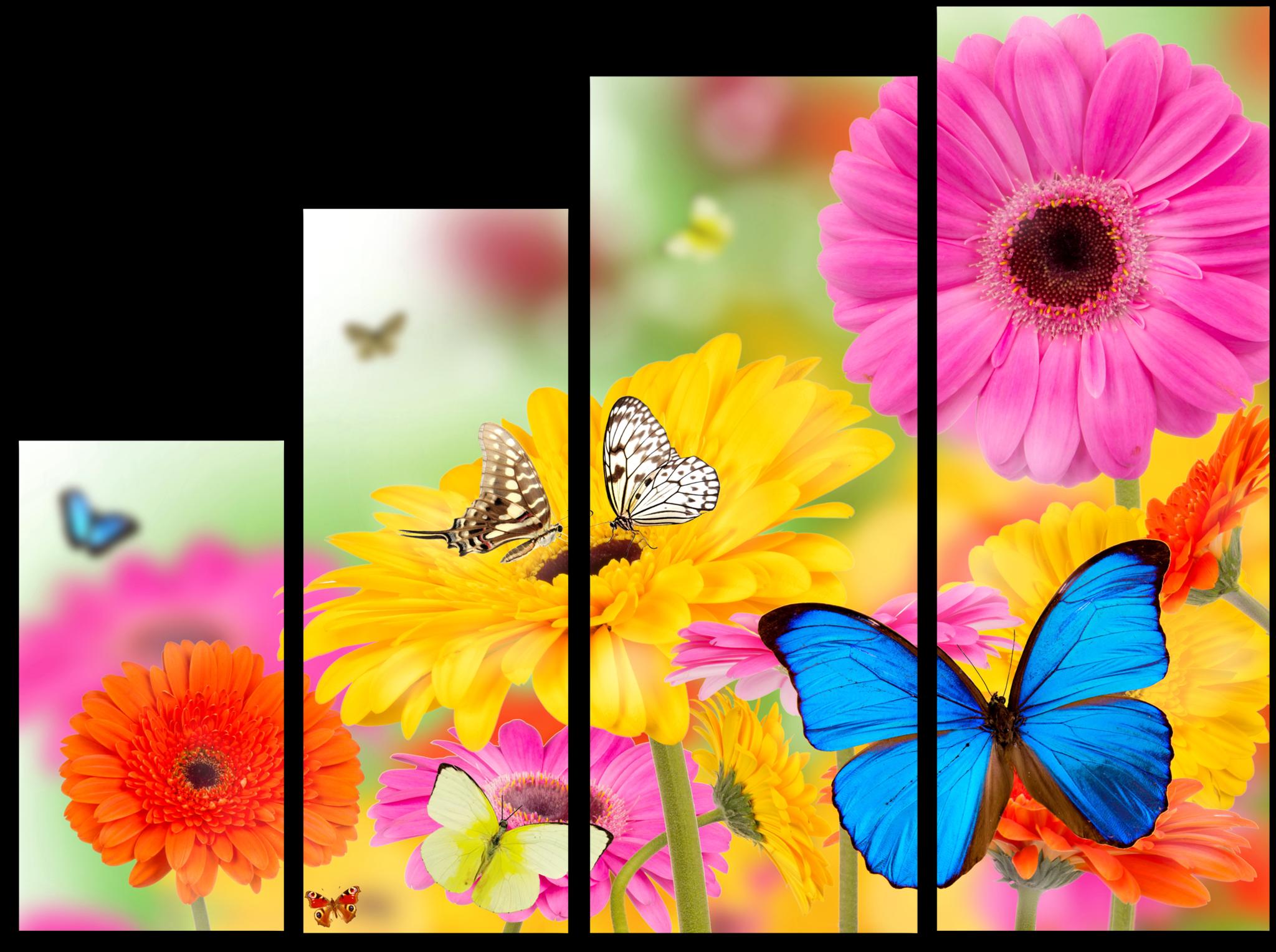 "Цветы Модульная картина ""Герберы"" М677.png"