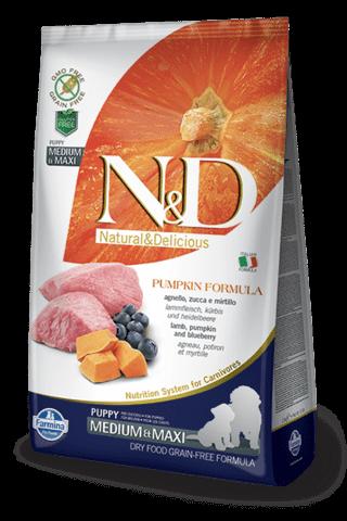 купить Farmina N&D Pumpkin Lamb & Blueberry Puppy Medium & Maxi сухой беззерновой корм для щенков, беременных и кормящих собак средних и крупных пород