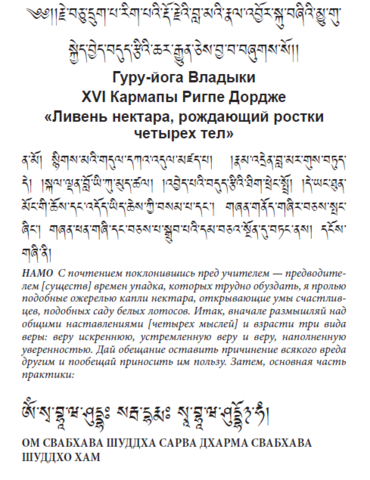 Гуру-йога Владыки XVI Кармапы Ригпе Дордже «Ливень нектара, рождающий ростки  четырех тел» (электронная книга)