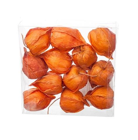 Набор физалиса искусственного 12шт., D3,5х6см, цвет:оранжевый