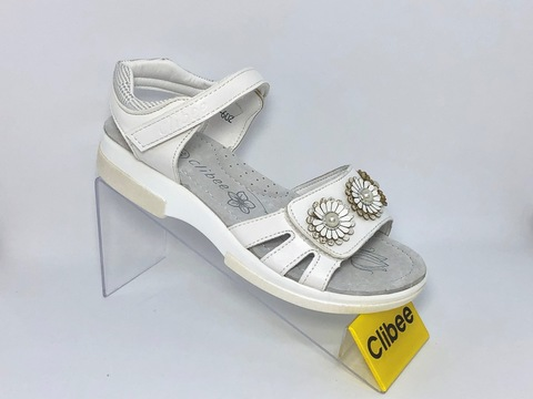 Clibee Z602 White 31-36