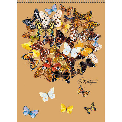 Праздник бабочек СКЕТЧПАДЫ