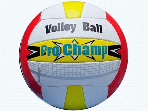 Мяч для волейбола ProChamp,