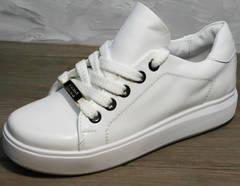 Женские модные кеды Molly shoes 557 Whate