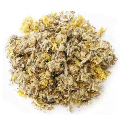 Травы Сушеница топяная, трава gnaphalium-04.jpg