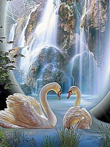 Алмазная Мозаика 30x40 Лебеди у водопада (Арт. MHZS261 )