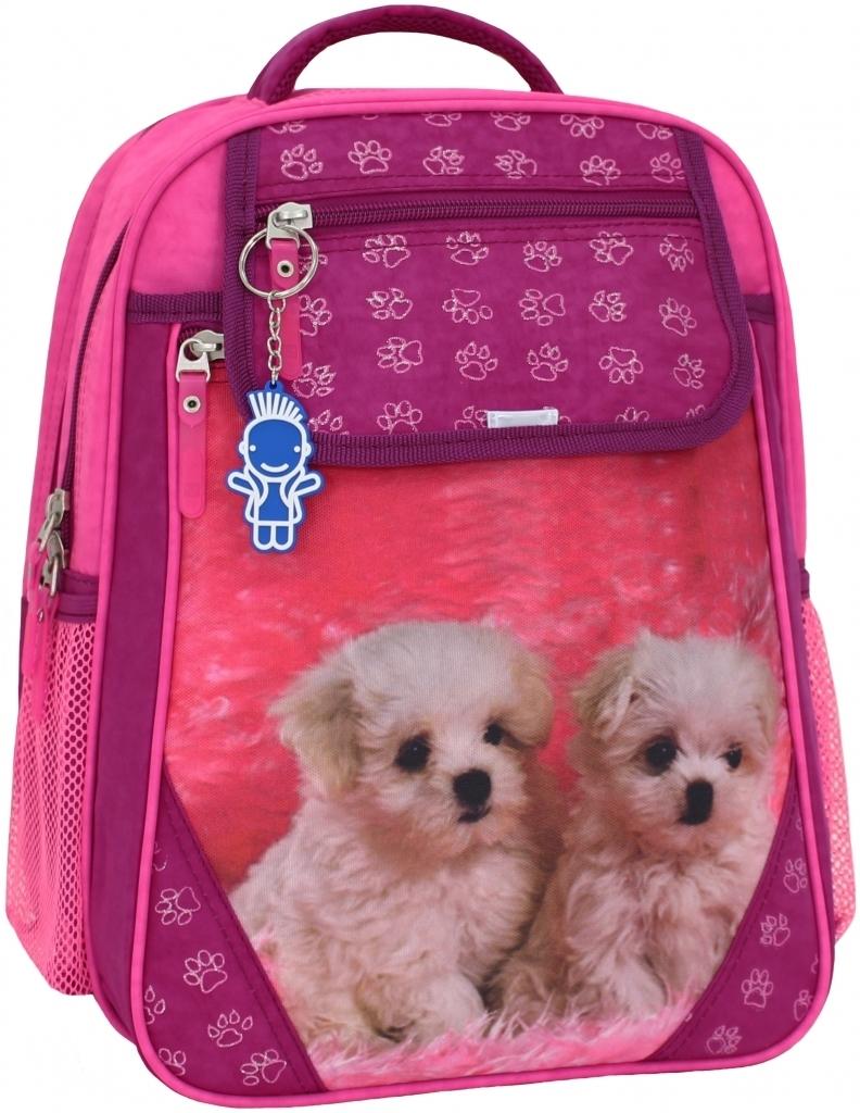 Школьные рюкзаки Рюкзак школьный Bagland Отличник 20 л. Малиновый 137д (0058070) bf72997e430ee991047046c011bbe062.JPG
