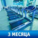 Карта на 3 месяца фитнеса в CityFitness Екатеринбург (dzebc)