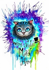 Картина раскраска по номерам 40x50 Магический кот