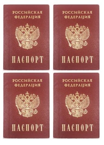 Печать на вафельной бумаге, Паспорт-6