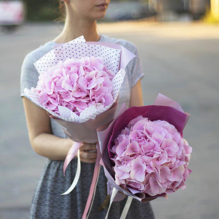Купить мини-букет из одной розовой гортензии в Перми