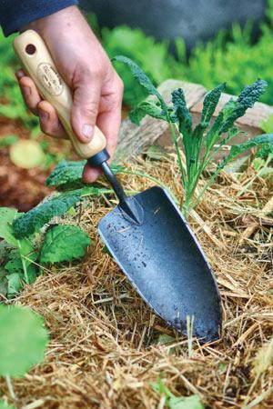 Совок садовый, посадочный, с кованым полотном DeWit