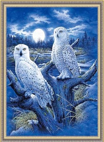 Алмазная Мозаика 50x65 Две белы совы в ночи