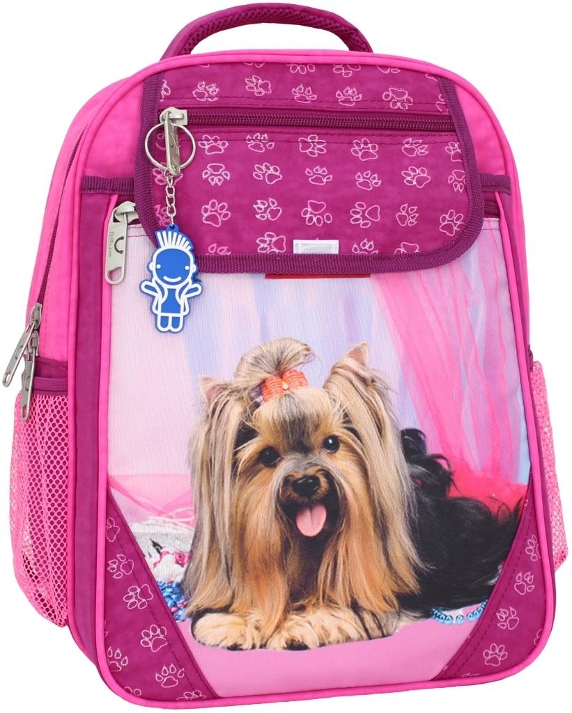 Школьные рюкзаки Рюкзак школьный Bagland Отличник 20 л. малина (собака 18) (0058070) 1db703eb6e8207f4b34233a69bcdc6dc.JPG