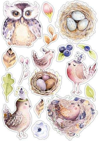 Печать на сахарной бумаге, Набор птицы 6