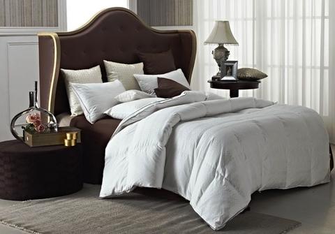 Одеяло пуховое Гагара