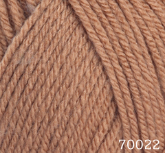 70022 (Щербет)