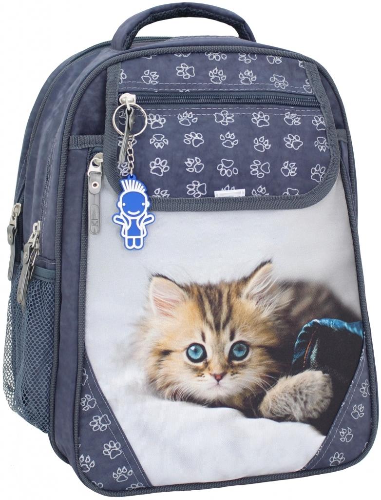 Школьные рюкзаки Рюкзак школьный Bagland Отличник 20 л. Серый (котенок светлый) (0058070) 0efc85973ad3cf5860dda94ad907c5bc.JPG