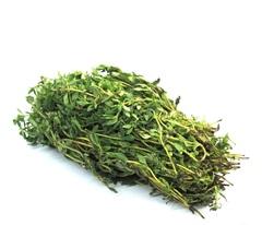 Тибул семена тимьяна (Гавриш)