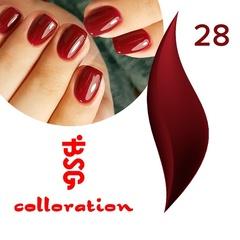 BSG Colloration, №28 Цвет спелой вишни