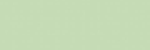 Плитка настенная Garden Grass WT11GDN04  600х200
