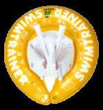круг SWIMTRAINER желтый