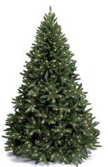Ель Royal Christmas Washington Premium 210 см с подсветкой