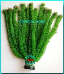Растение Атман M-005B, 40см