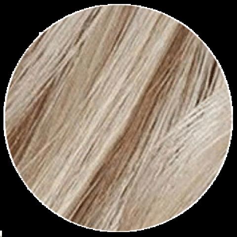 Goldwell Topchic 11SN (серебристо-натуральный блонд) - Стойкая крем краска