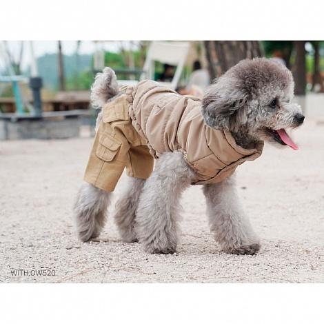 куртка для пуделя