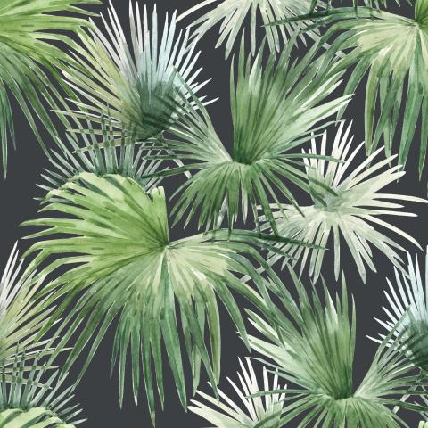 Тропические листья.