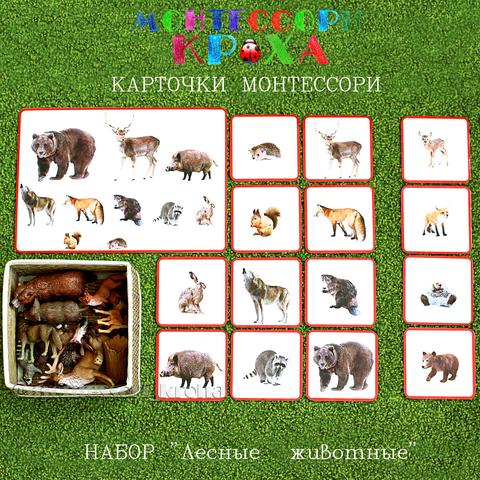 КАРТОЧКИ МОНТЕССОРИ НАБОР «Лесные животные»