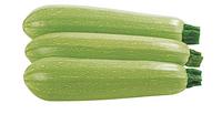 Кабачок Марселла F1 семена кабачка (Enza Zaden / Энза Заден) марселла_семена_овощей_оптом.png