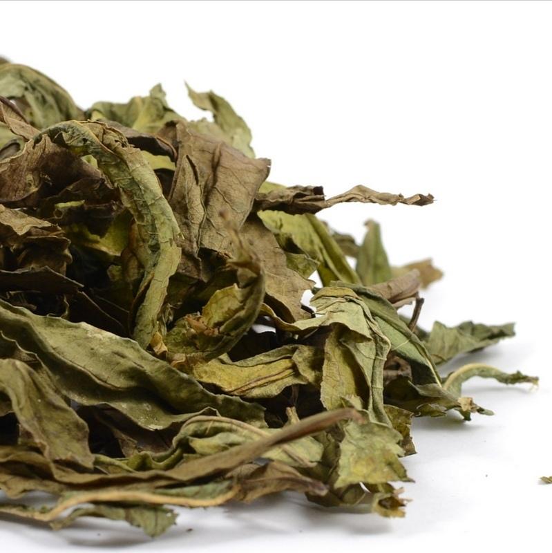 Травы Кипрея лист chamaenerion-leaf-04.jpg