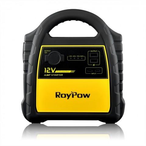 RoyPow J301