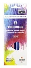 Карандаши цветные TRIOCOLOR 3132, 12 цветов с точилкой