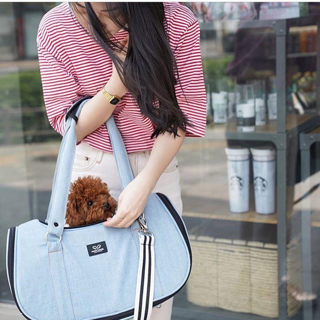 джинсовые сумки переноски для собак