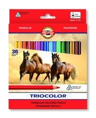 Карандаши цветные TRIOCOLOR 3145, 36 цветов