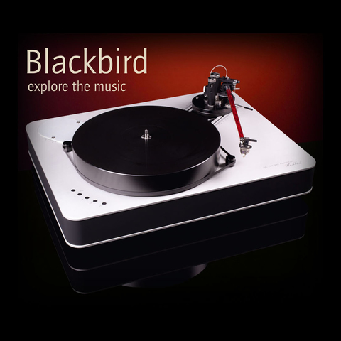 Dr. Feickert Analogue Blackbird (DFA-120, brass inserts)
