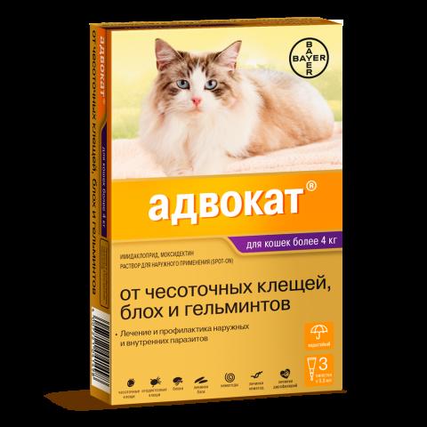 Адвокат для кошек 4-8 кг