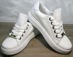 Кеды на весну женские Molly shoes 557 Whate