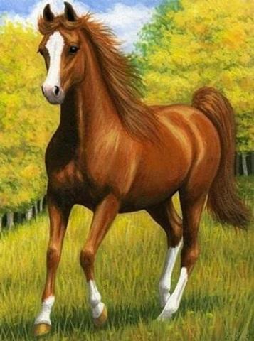 Алмазная Мозаика 30x40 Лошадь на прогулке (Арт. MТС7506 )
