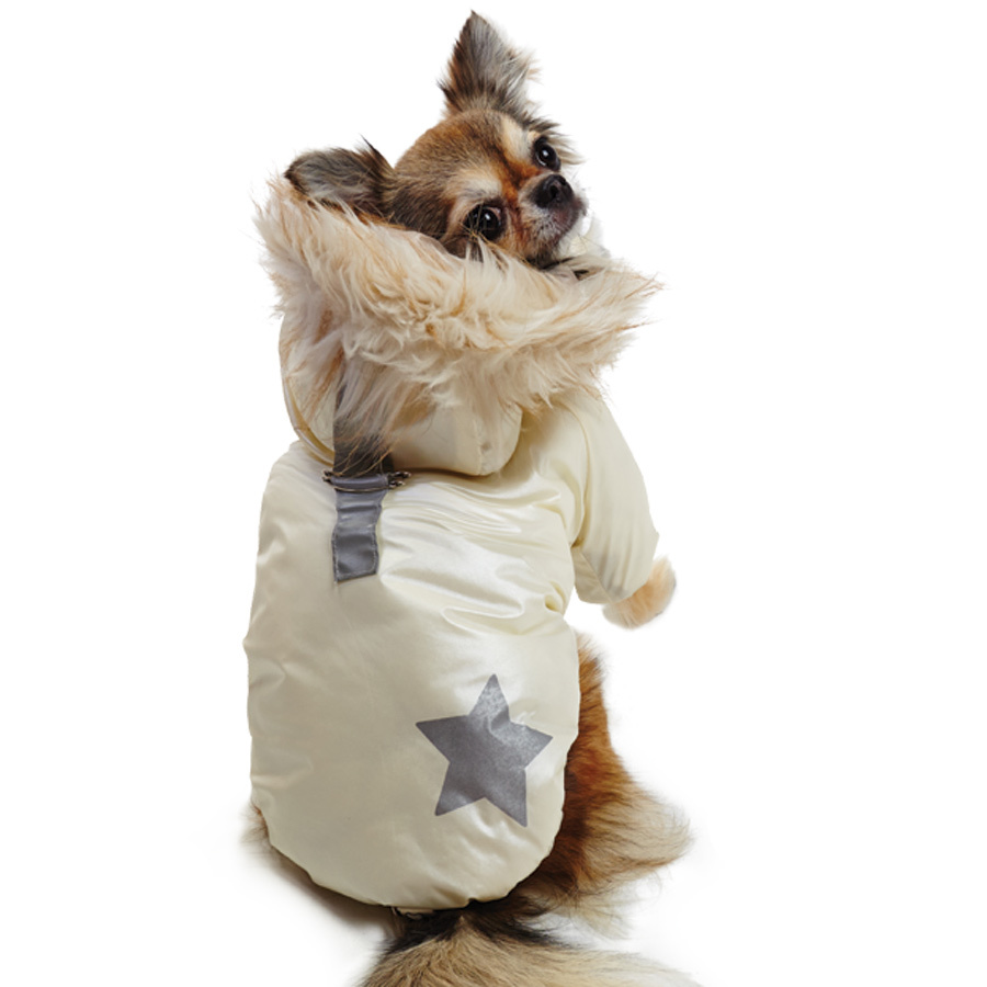 зимняя куртка для чихуахуа