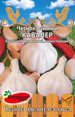 Чеснок озимый Кавалер, 5 шт