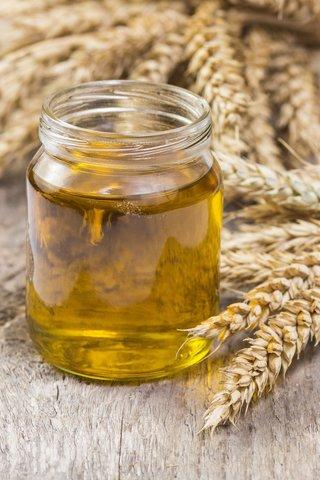 Масло зародышей пшеницы НЕРАФИНИРОВАННОЕ (органик)30мл - 600тг