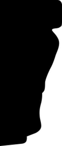 Молдинг гибкий 1.51.334