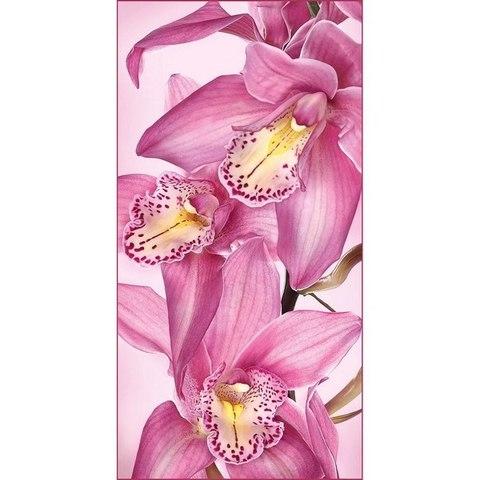 Цветы Афродиты - орхидеи 134x261 см