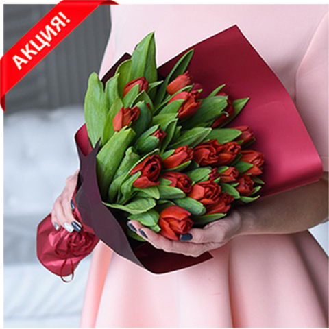 Букет 21 красный тюльпан